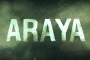 ARAYA System Requirements